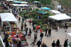 marché aux fleurs et aux saveurs de saint Didier au mont d'or
