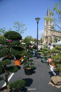 Marché aux fleurs 2009